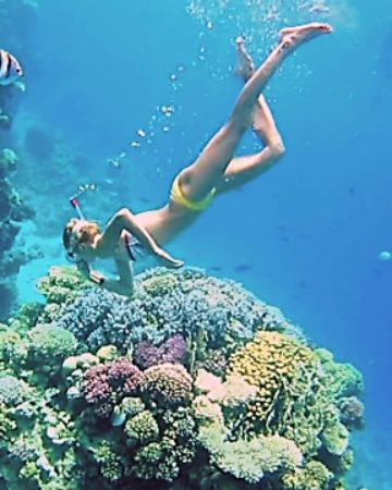 Snorkelling and Deep Sea Fishing
